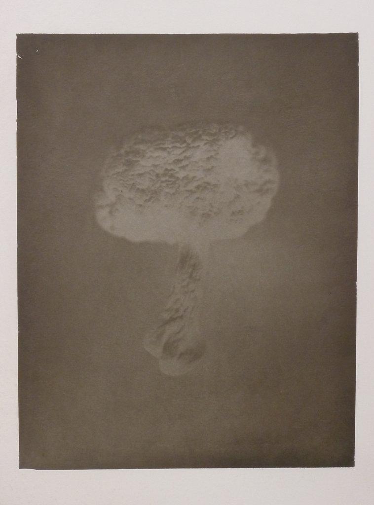 Mushroom Negative, 2014